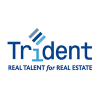 TRIDENT LIMITED