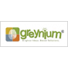 Greynium Information Technologies Pvt Ltd