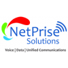 NetPrise Solutions