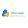 TechBliss Solutions