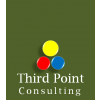 Third Point Consulting