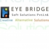 EyeBridge Soft Solution Private Limited