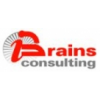 Netbrains Consulting  Solutions Pvt. Ltd.
