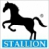 Stallion Systems And Solutions Pvt Ltd