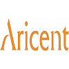 Aricent Organization