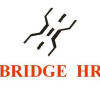 Bridge Hr Consulting Private Limited
