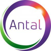 Client Of  Antal International