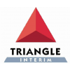 Triangle (a Unit Of Ratein Infotech India Pvt Ltd)